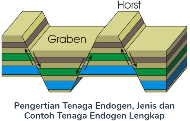 Pengertian Tenaga Endogen Beserta Jenis Dan Contoh Tenaga Endogen Terlengkap Disini