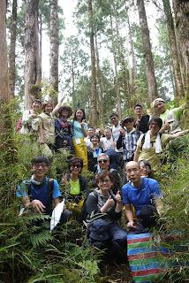 遁入路邊的樹叢、發現一片仙境,原來這就是我們了解森林健康狀況的小園地~沒進來別說來過太平山唷!