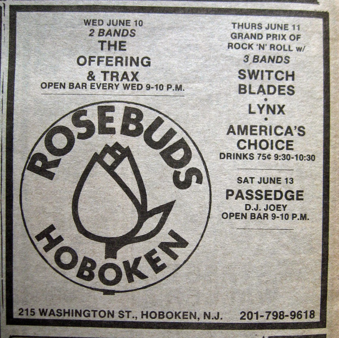 Rosebud's band line up 1981