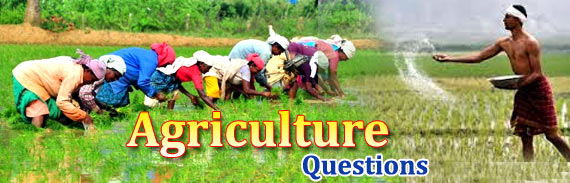 Agriculture GK Objective Questions and Answers for ...