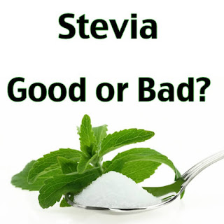 Does Stevia Cause Cancer
