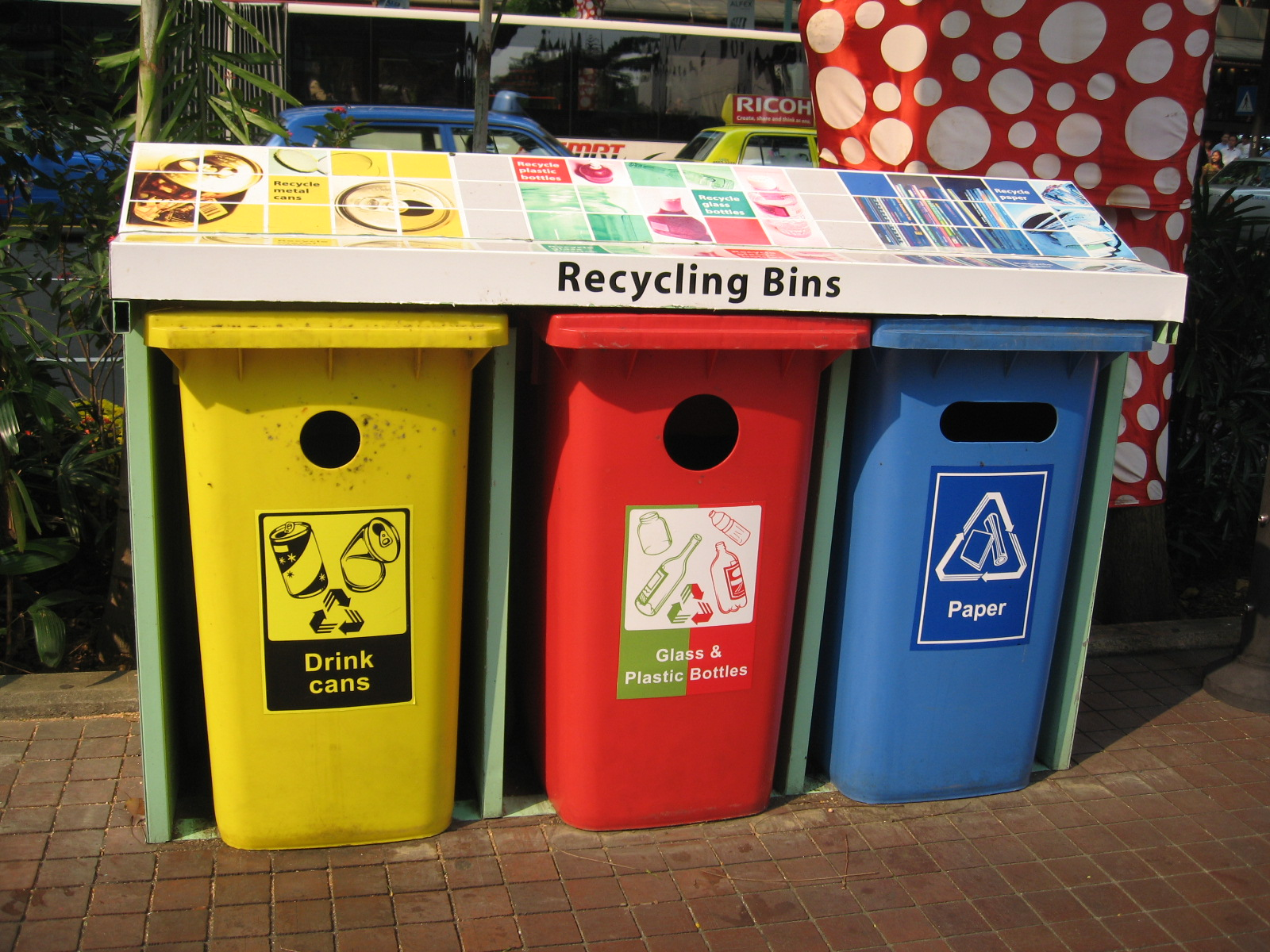 Compost Say whaaaat What is the difference between composting and recycling part 2