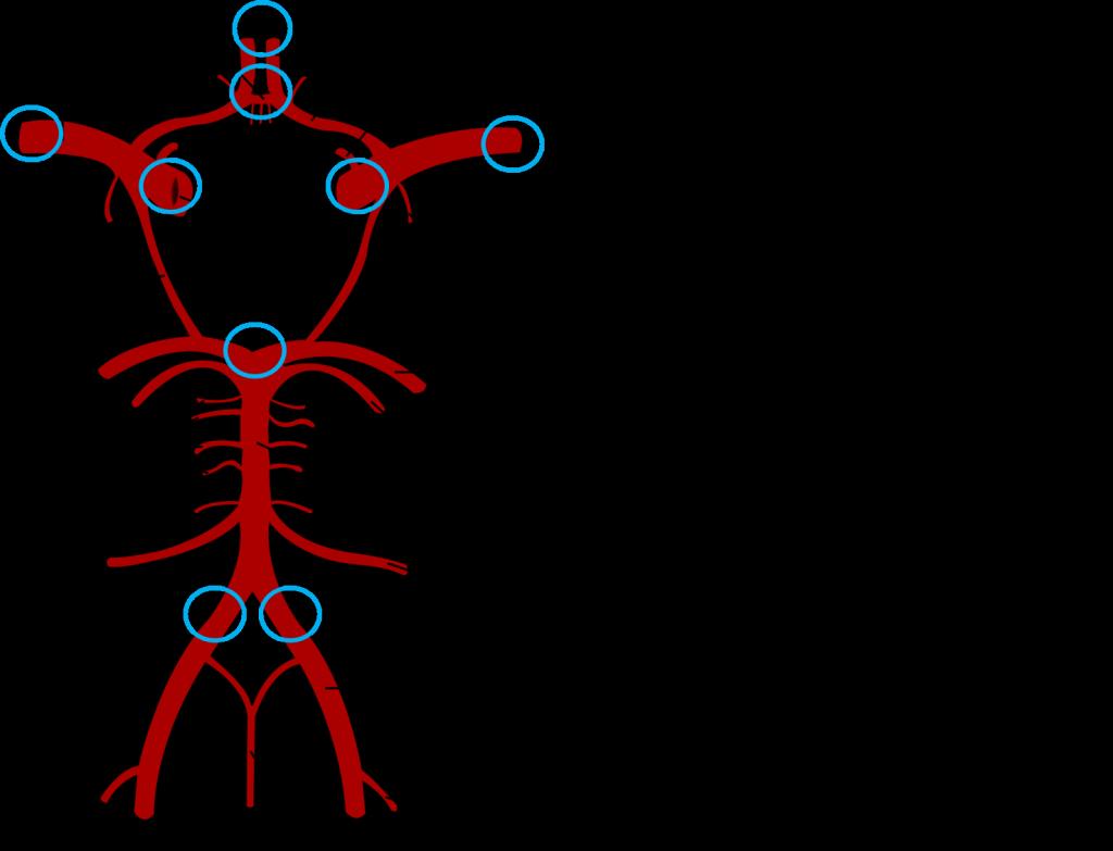 がんの分子腫瘍学・遺伝学