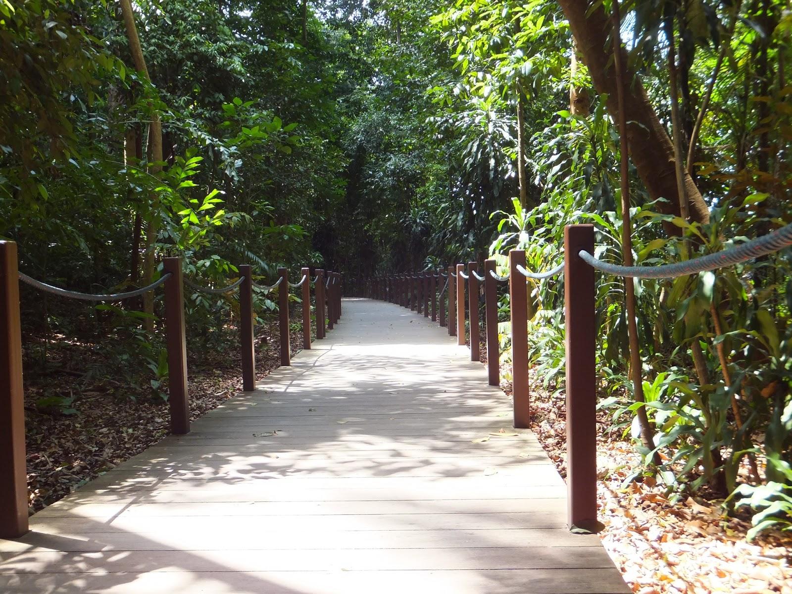 300 Garden Walk: Coffs Harbour Garden Club: Singapore Botanic Gardens