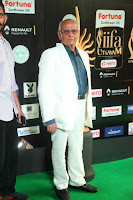 Celebrities sizzling Exclusive Pics at IIFA Utsavam Awards 2017  Day 2  HD Exclusive 44.JPG