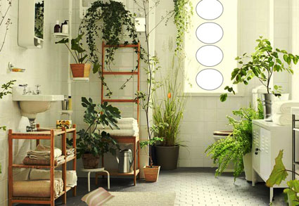 Plant Furnishings House Escape