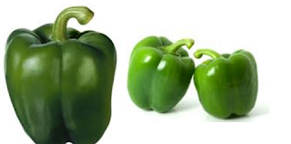 Capsicum, Shimla Mirch Spice name in different Indian languages (regional)