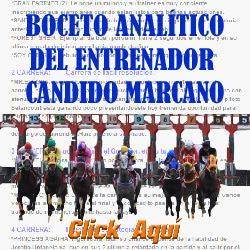 http://protocolohipico.blogspot.com/2016/12/hipismo-analisis-validas-electronico.html#more