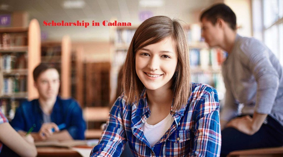 Scholarships and Study in Canada for International Students