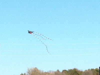 a kite over the St. Croix (Wisconsin trees in background)