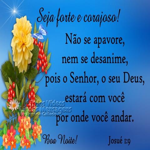 Seja forte e corajoso!  Não se apavore, nem se desanime,  pois o Senhor, o seu Deus,  estará com você por onde você andar.  Josué 1:9  Boa Noite!