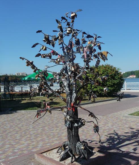 Тернополь. Дерево молодожёнов