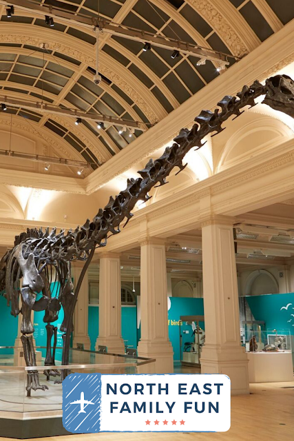 Dippy On Tour | Newcastle Great North Museum Tickets
