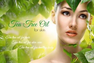 Health Benefits of Tea Tree Oil on Skin