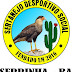 Sertanejo de Serrinha está na final da Copa Sisal Sub-15