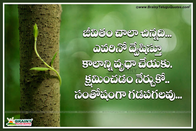 Being Happiness in Life Quotes in Telugu, Telugu Quotes, Best Telugu Life Quotes