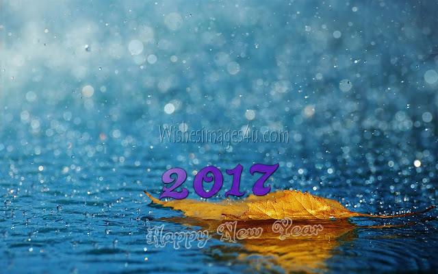 Happy New Year 2017 Best 1080p HD Nature Images Download For Desktop