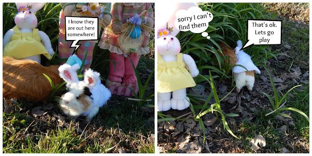 #Cinnamon lost the #Easter baskets. CarmaPoodale.com