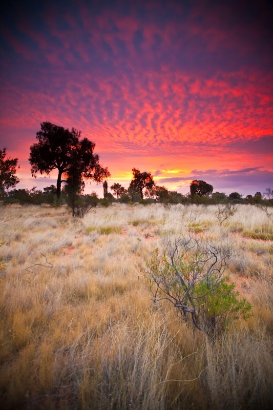 Kings Canyon, the Outback, Australia | Australia the perfect land photography lovers