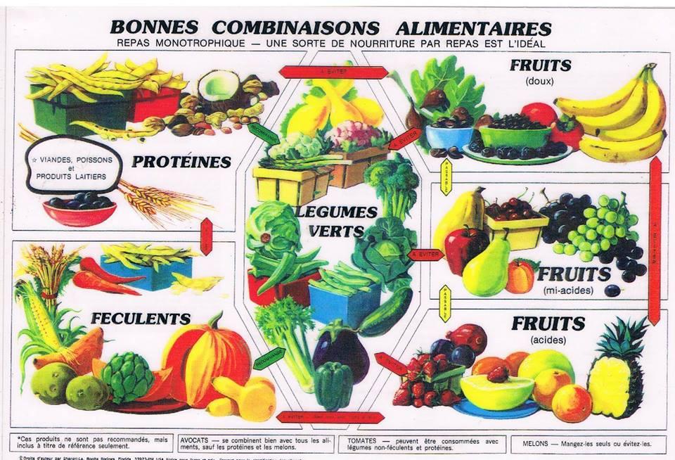 Liste des aliments compatibles avec la combustion des graisses