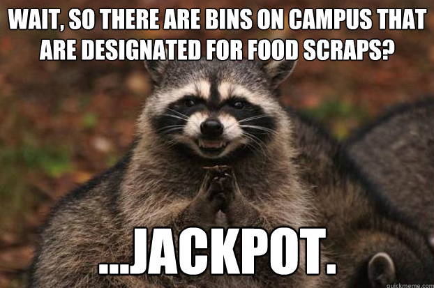 compost pilot project at ucsb  cpp memes
