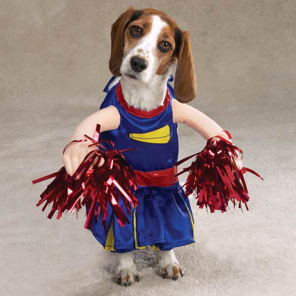 12 Creative and Unusual Dog Costumes.