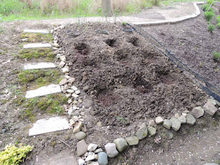 Picture of hillside herb garden being prepped, many holes dug in the ground.