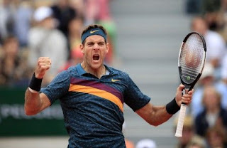 Del Potro claims five-set win over Nishioka