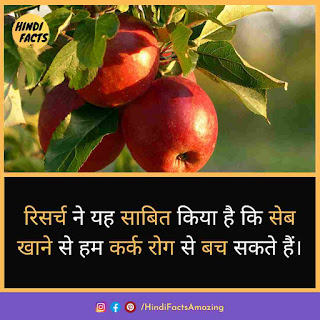 benefits of apple in hindi