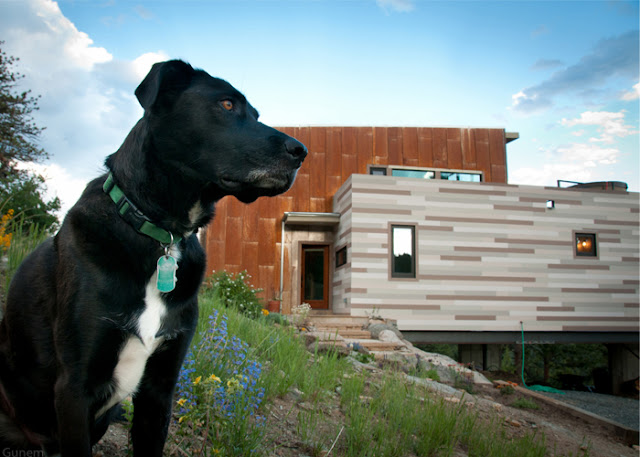 1500 sq ft Off-the-Grid Shipping Container Home, Nederland, Colorado 3