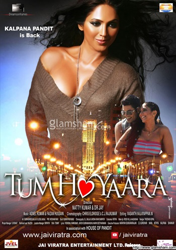 Tum Ho Yaara 2014 Hindi 480p WEB HDRip 350mb