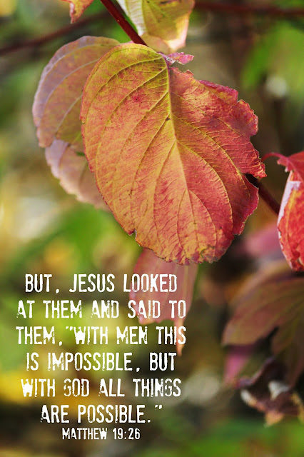 God's word, sunday verse, uplifting verse, inspirational quote, fall photography, http://bec4-beyondthepicketfence.blogspot.com/2015/11/sunday-verses_7.html