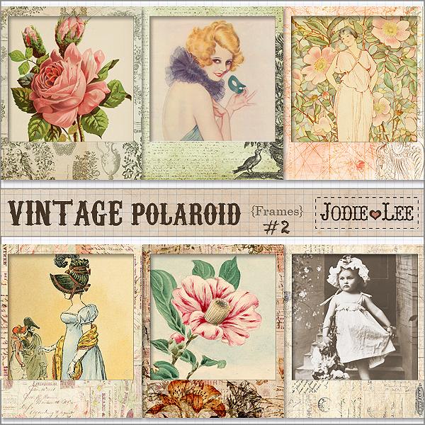 Vintage Polaroid Frame Jodie Lee Desig...