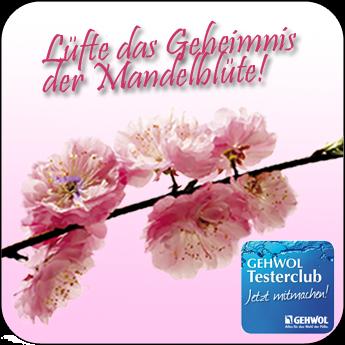 http://www.fussvital.info/index.php/luefte-das-geheimnis-der-mandelbluete/