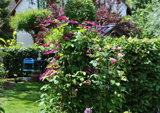 Hecken Gartenzimmer schaffen