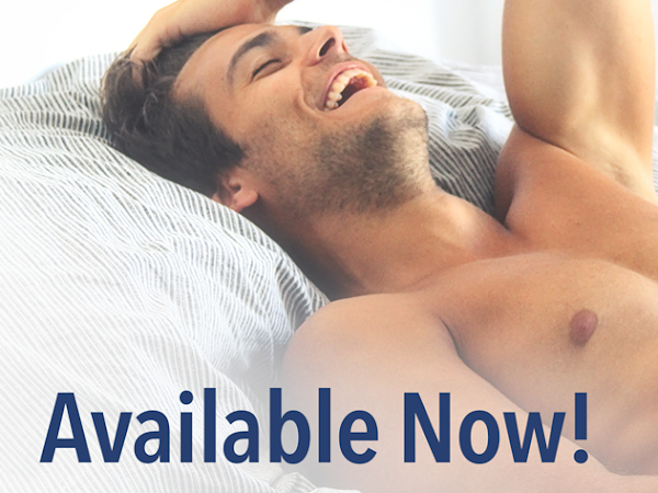 Part-time Lover by Lauren Blakely | Review + Excerpt