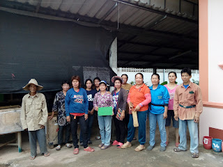 กลุ่มเลี้ยงจิ้งหรีดบ้านแม่อ้อหมู่ 8ร่วมกันทำงานที่บ้านฟาร์มลุงบิว