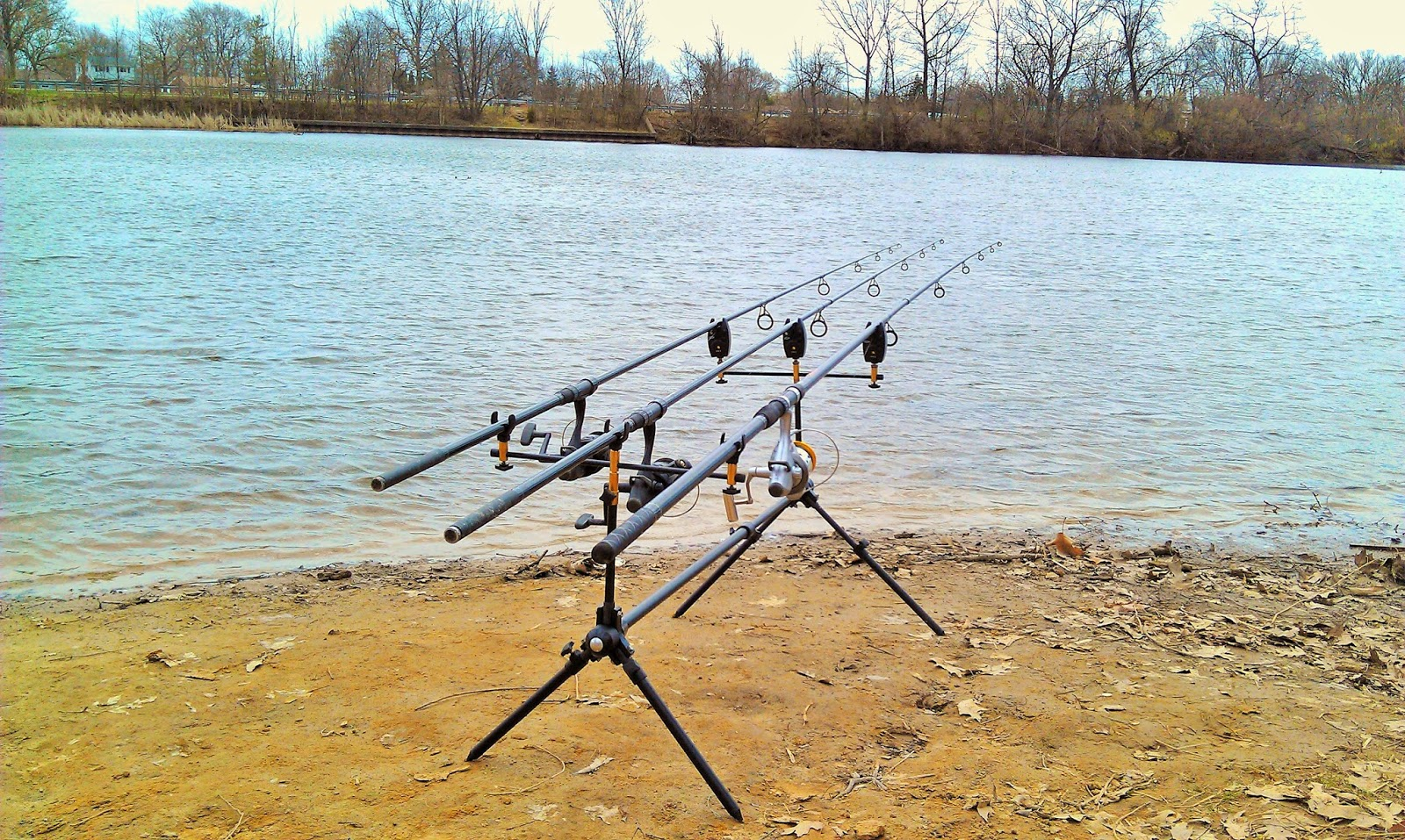Michigan carp fishing blog hines park drive wayne for Fishing in lake michigan