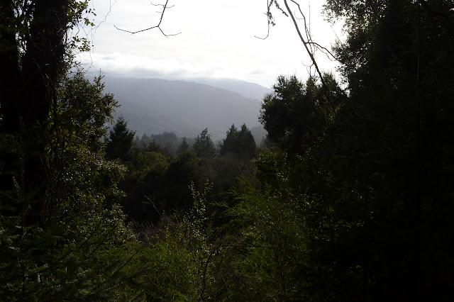 something like view