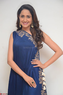 Pragya Jaiswal in beautiful Blue Gown Spicy Latest Pics February 2017 083.JPG
