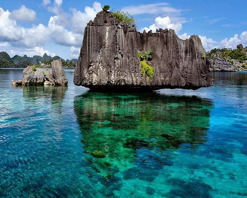 Tinuku Travel Raja Ampat, diving and snorkeling paradise watching manta rays, barracuda, turtles, dugong and cenderawasih