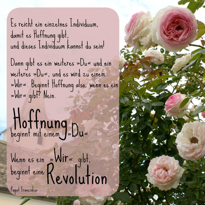 Papst Franziskus - Hoffnung - Revolution