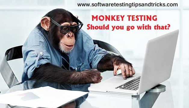 What is monkey testiing ? Should you try Monkey testing for your product ?