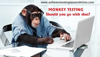 monkey testiing