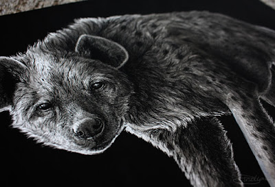 Angle view of a spotted hyena illustration done with pens