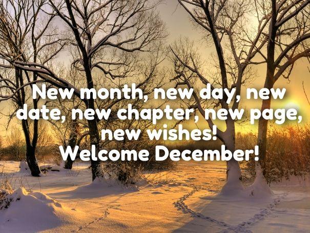 Welcome December 2018