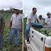 Secretaria Municipal de Agricultura, visita Produtores de Melância do Muncípio