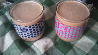 batido-leche-soja-avena-chocolate