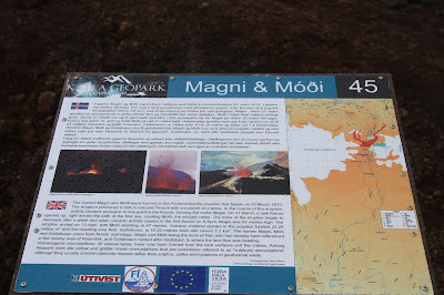 Magni and Móði Information