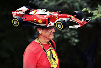 Formula 1 fan